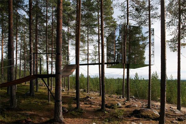 treehotel_01