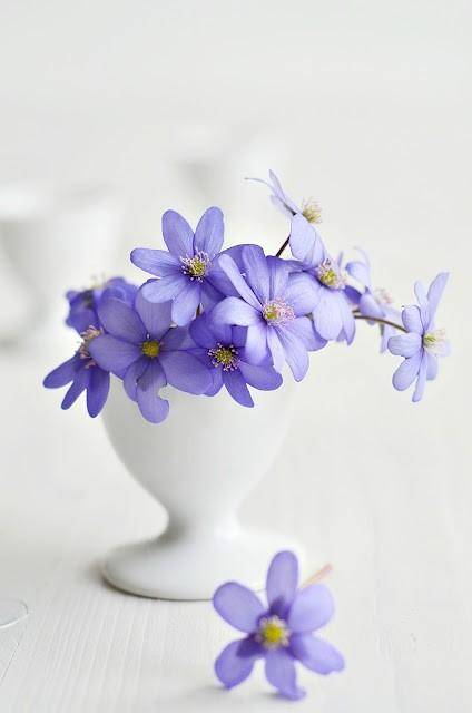 decorar_con_flores05