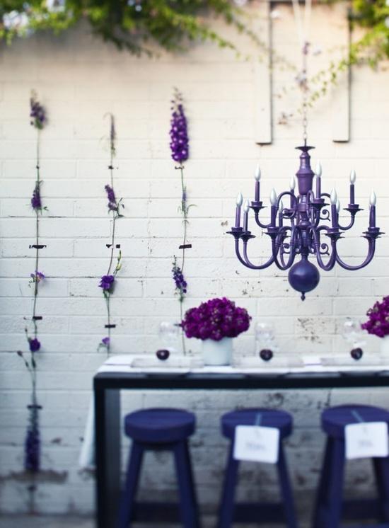 violeta_19