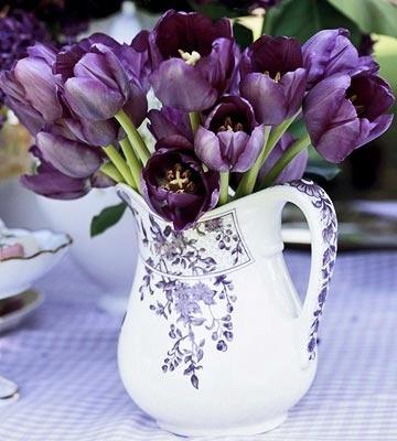 tulipanes02