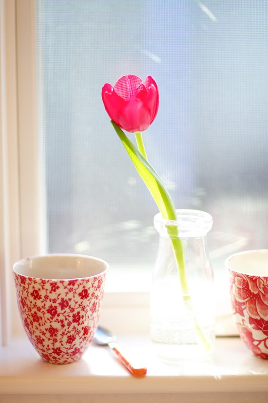 tulipanes03
