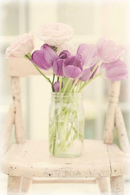 tulipanes06