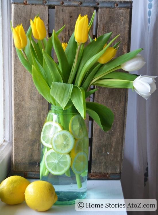 tulipanes07