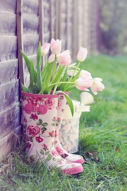 tulipanes09