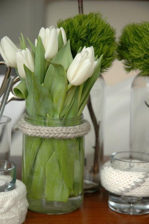 tulipanes14