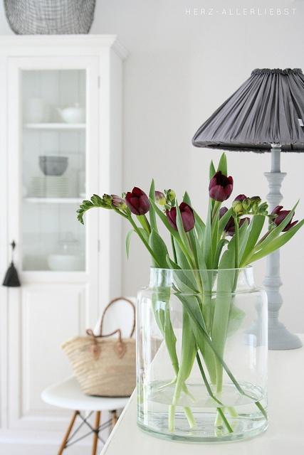 tulipanes18
