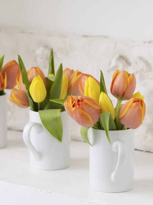 tulipanes22