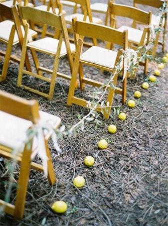 lemons-limones 04