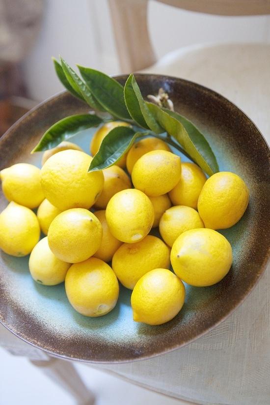 lemons-limones 06