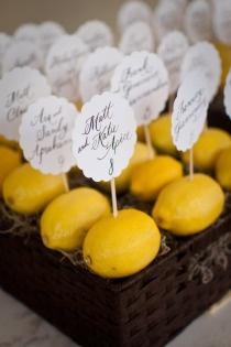 lemons-limones 07