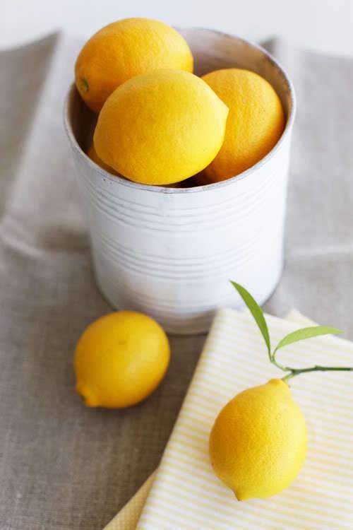 lemons-limones 08
