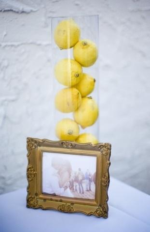 lemons-limones 14