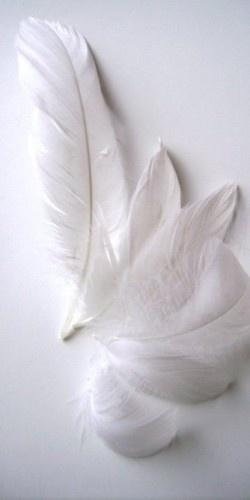 blanco_09