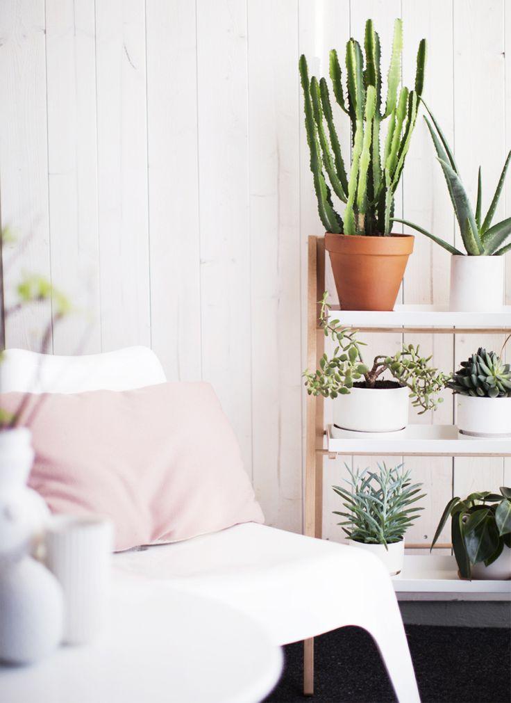 Decorar Con Plantas Estilo Escandinavo