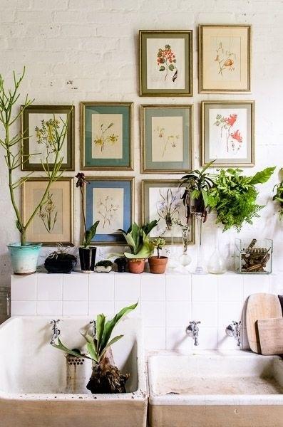 plantas-en-casa-02