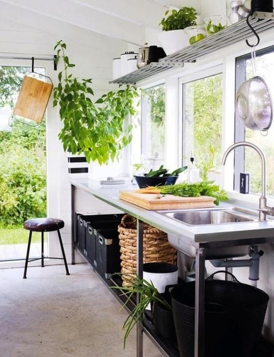 plantas-en-casa-08