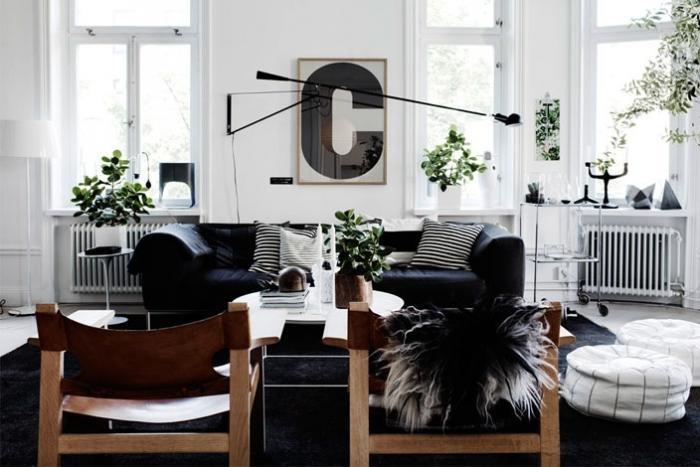 plantas-en-casa-10