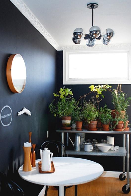 plantas-en-casa-11