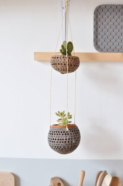 plantas-en-casa-15