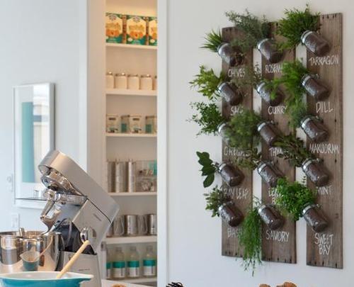 Peque o huerto de especias en el interior estilo escandinavo - Pequeno huerto en casa ...