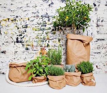 paper-bag-havana-01